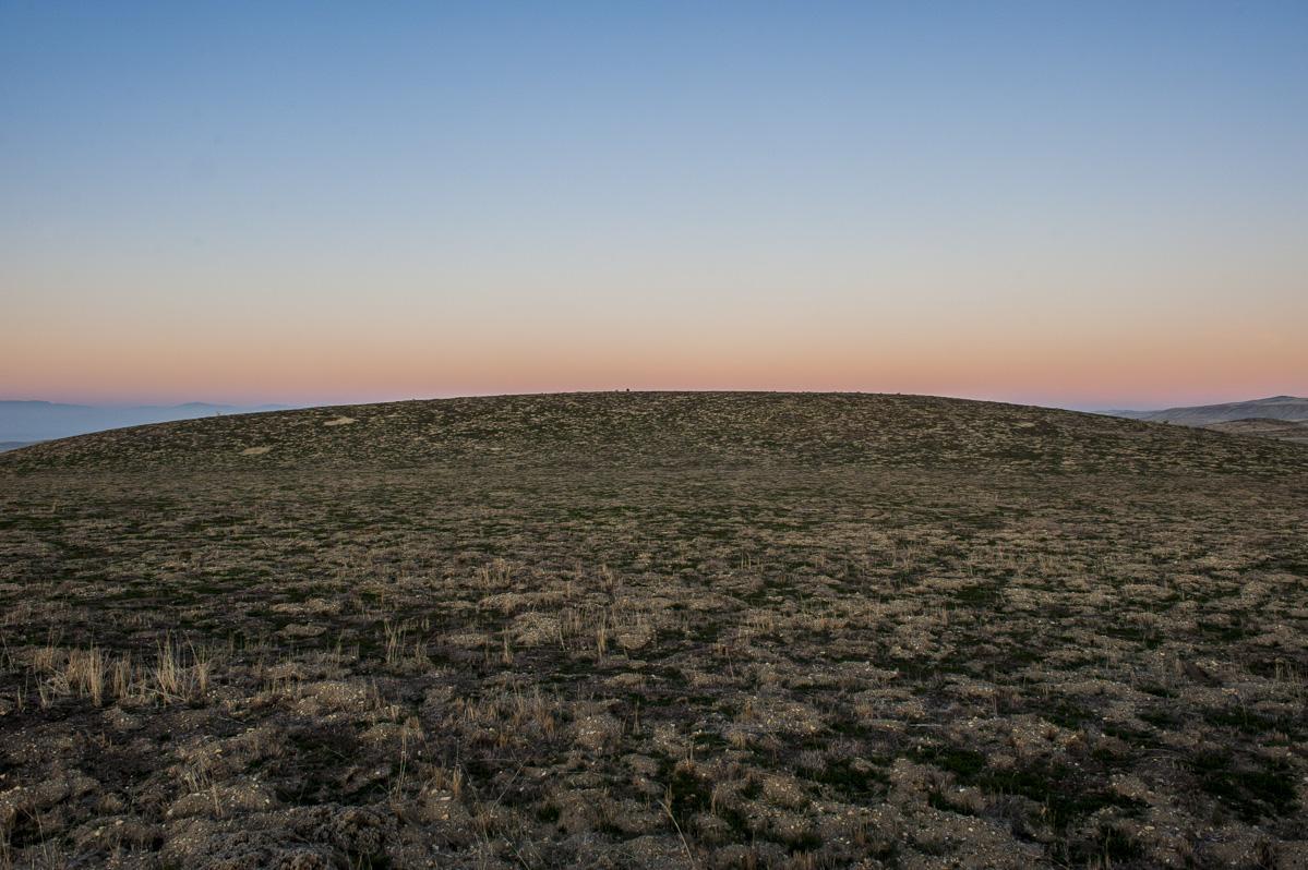 The Carizzo Plain